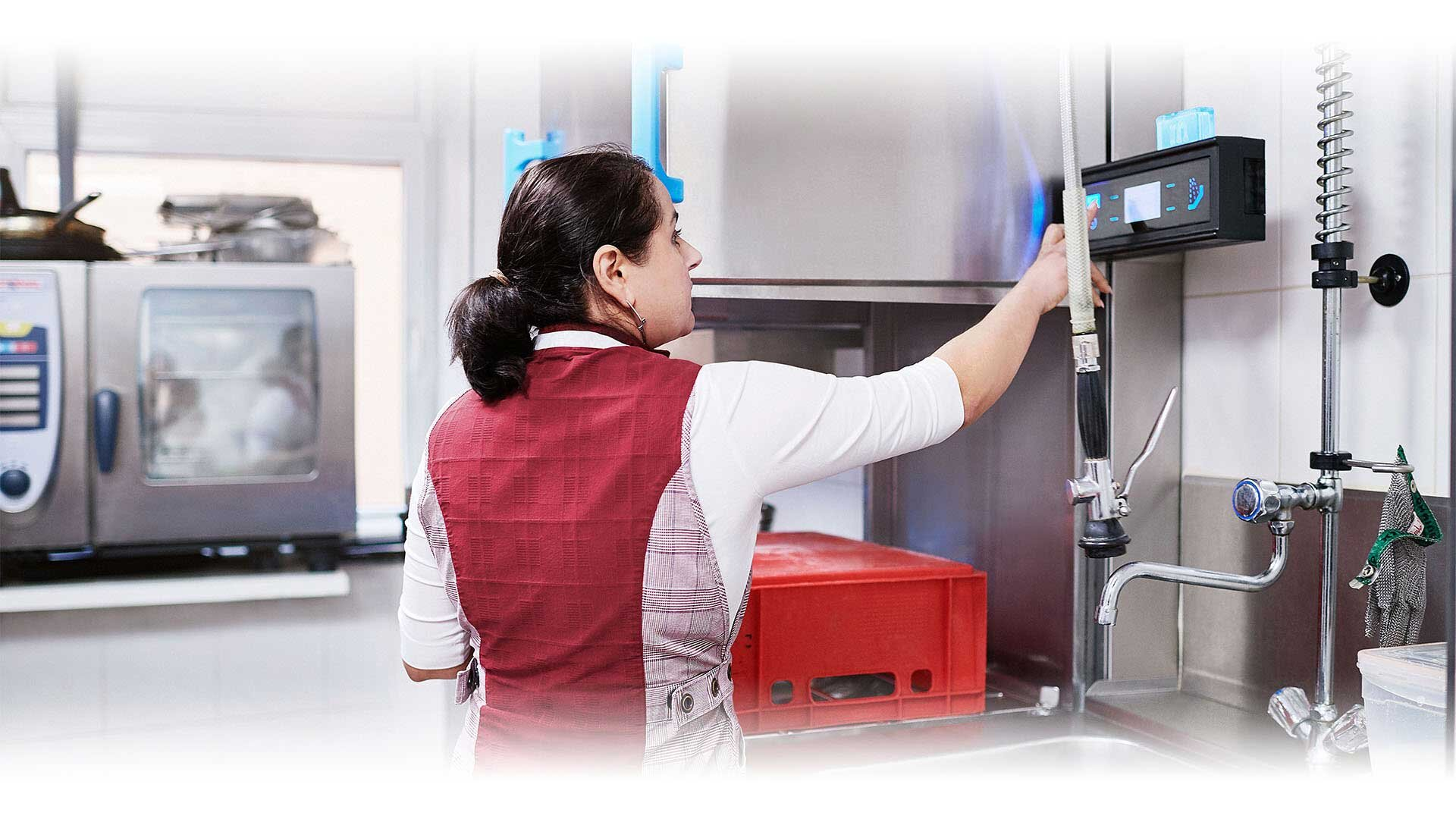 dishwashing solutions butchers